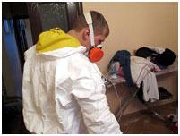 дератизация домов ташкент